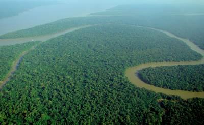 แม่น้ำและป่าอะเมซอน