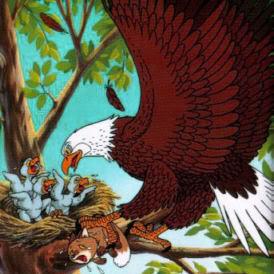 eagle003