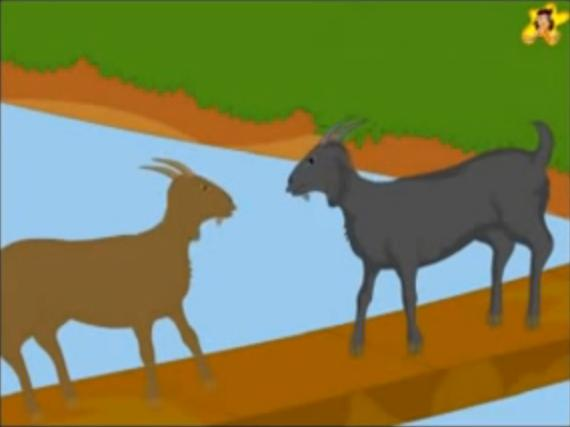goats005