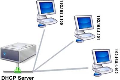 DHCP Server / IP Address