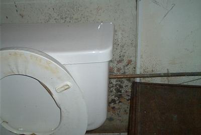 วิธีกำจัดราดำในห้องน้ำ