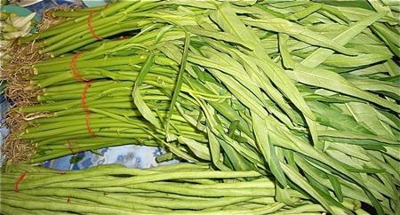 ผักบุ้งจีน