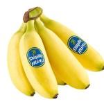 กล้วยไข่