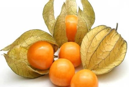 เคพกูสเบอร์รี (Cape Gooseberry) ผลไม้เพื่อสุขภาพ พร้อมประโยชน์และสรรพคุณ -  ด.ญ.อริสา ฝากา ม.1/10