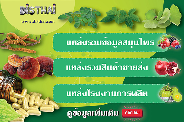 disthai herb