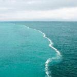 มหาสมุทร
