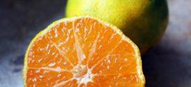 ส้มเขียวหวาน ประโยชน์และสรรพคุณของส้มเขียวหวาน